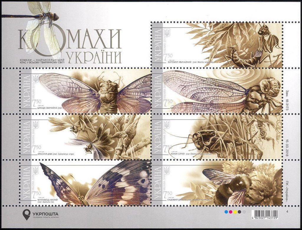 Insects-of-Ukraine