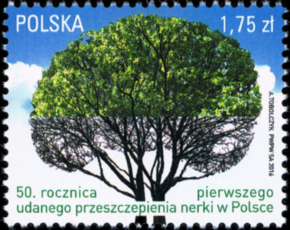 2016-Polen