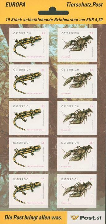 Salamander - Flusskrebs