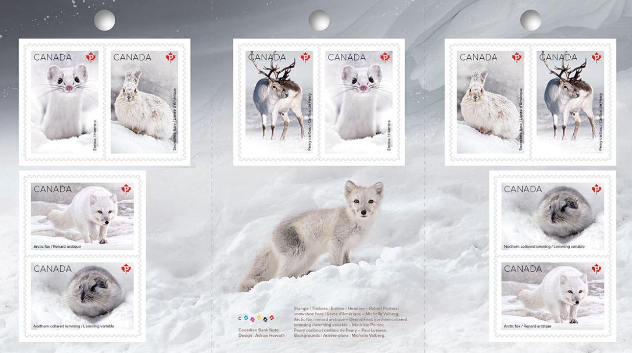 Schneesäugetiere
