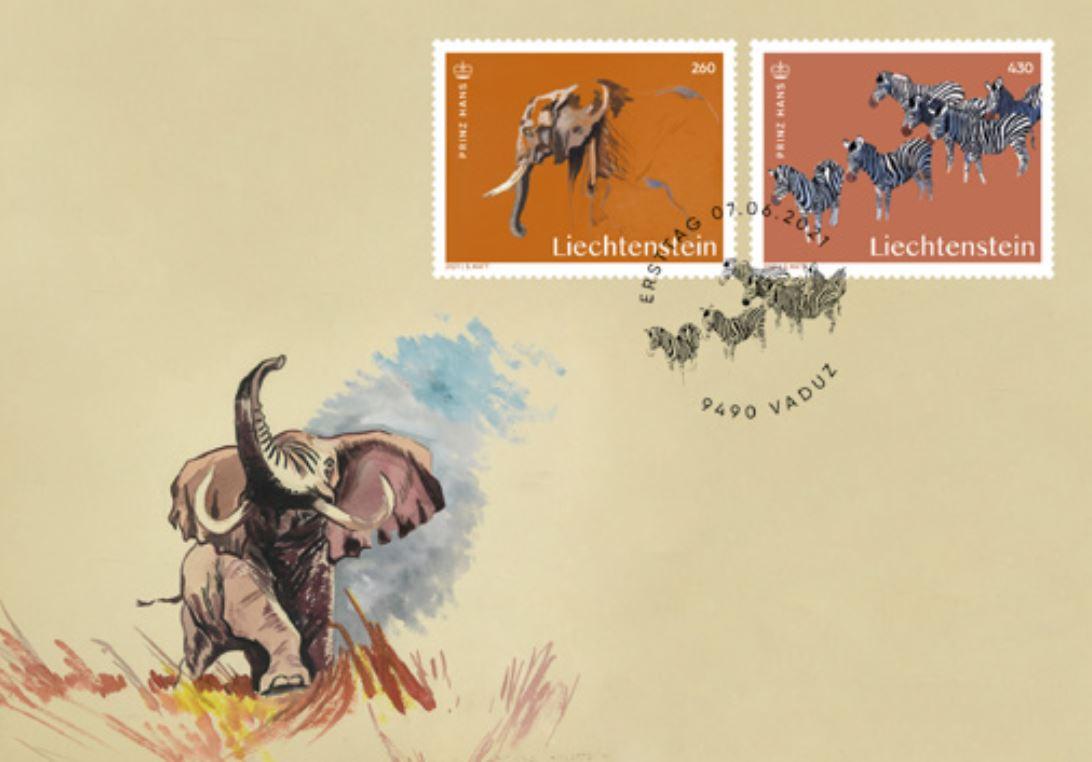 Elefant und Zebraherde