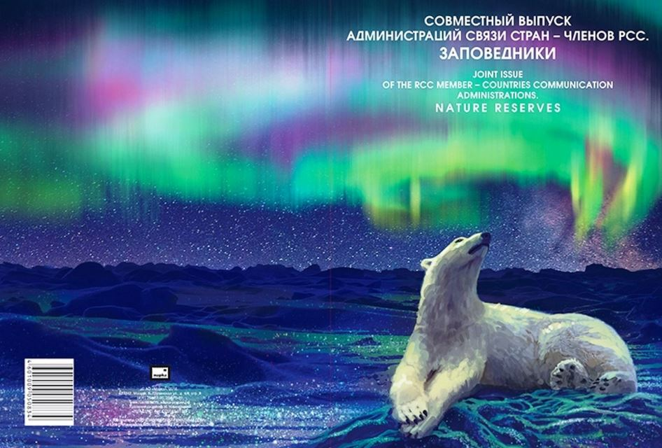 Eisbär im Polarlicht